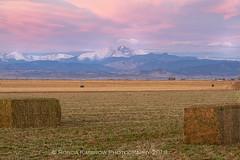 Longs Peak Sunrise (RondaKimbrow) Tags: longspeak mountain colorado sunrise colorful field countryside frontrange agriculture farming scenic coloradolandscape coloradophotography coloradoimages womenphotographers