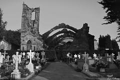 Cementerio de cambados (Ismael Owen Sullivan) Tags: d5300 digital cambados galicia arousa dark oscuridad oscuro cementerio foto fotografia photography españa europa europe abandonado abandoned art arquitectura