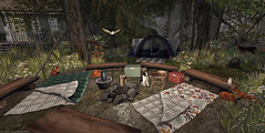 Late Season Outing (Frankie Jade Designs) Tags: mudhoney ultra camping sleeping log cooler kunst shinyshabby jian fameshed owl racoon stump virtualreality avatar compulsion chez moi heartgardencenter whatnext dustbunny botanical