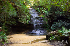 Blue Mountains Waterfall (Theo Crazzolara) Tags: bluemountains blue mountains mountain australia newsouthwales australien sydney landscape scenic rock hiking balance sport health freedom nature natural woods forest waterfall water poolofsiloam pool siloam tropical jungle