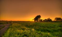 Sunset over the meadows. (Alex-de-Haas) Tags: 11mm adobe blackstone d850 dutch hdr holland irix irix11mm lightroom nederland nederlands netherlands nikon nikond850 noordholland photomatix photomatixpro beautiful beauty drama dramatic landscape landschaft landschap lente lucht mill molen mooi nature natuur orange oranje polder skies sky skyscape spectaculair spectacular spring sun sundown sunset warm zonsondergang