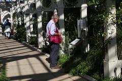Absorbing the information at Kew (stephenmid) Tags: kew royalbotanicgardenskew
