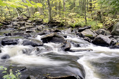 Tasso Creek Rapids One (Bill Smith1) Tags: billsmithsphotography heyfsc lomo400c41 muskoka nlp2018 olympusom2n zuikomc50f18lens believeinfilm