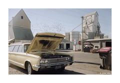 (Daiku_San) Tags: film ishootfilm 35mmfilm colorfilm rangefindercamera usetheforce sovietcamera fsurangefinder redoktober zorki4 jupiter123528 svemacolor125 epsonv750mpro