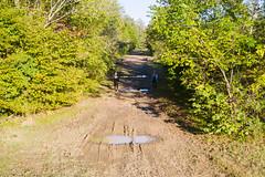 Drone (zane.hollingsworth) Tags: 1200ss 103mm 28mm35eqv drone mavicpro2 mosslake trespassing f5 iso100