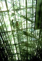 Institut du Monde Arabe, Paris (blafond) Tags: ima institutdumondearabe escaliers stairs staircase paris france iledefrance