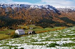 Hektoen (KvikneFoto) Tags: høst autumn fall landskap natur snø snow tamron nikon