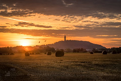 The National Wallace Monument (GenerationX) Tags: abbeycraig barr canon6d carseoflecropt cornton nationalwallacemonument neil ochilhills scotland scottish stirling bales clouds crops dawn field gloaming grass hay landscape leaves monument morning mountains sky sunrise trees water