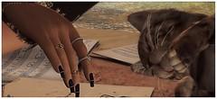 ╰☆╮Il y a deux moyens d'oublier les tracas de la vie : les chats et la musique.╰☆╮ (яσχααηє♛MISS V♛ FRANCE 2018) Tags: cazimi blackbantam avaway blog blogger nutmeg blogging bloggers beauty bento virtual woman secondlife sl styling slfashionblogger shopping style designers fashion flickr france firestorm fashiontrend fashionable fashionindustry fashionista fashionstyle female girl lesclairsdelunederoxaane lesclairsdelunedesecondlife nails mesh poses photographer posemaker photography roxaanefyanucci avatar avatars artistic art appliers