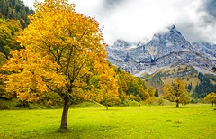 Großer Ahornboden (werner boehm *) Tags: wernerboehm groserahornboden eng hinterris tyrol tirol herbst autumn fall ahorn herbstlaub berge alpen karwendel