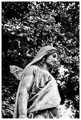 Serenity (awbaganz) Tags: serenity statue prague praha czechrepublic angel cemetary graveyard sculpture female bw monochrome fujifilm xpro2