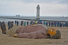 Giant shipwrecked (James O'Hanlon) Tags: giants giant liverpool spectacular liverpoolspectacular liverpoolsdream dream liverpools 3 3giants threegiants new brighton newbrighton wirral beach fortperchrock royal de luxe royaldeluxe jeanluc courcoult jeanluccourcoult dog walk drink