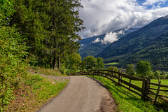 Happy Fenced Friday! (Janos Kertesz) Tags: österreich nature landscape tree fence green grass forest path mountain road scenic countryside mountains outdoors woods