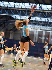 4A132782 (roel.ubels) Tags: volleybal eredivisie talent team papendal valkenhuizen sport topsport pharmafilter us tt 2018 volleyball indoor