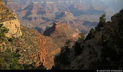 20160825_01 View from Bright Angel Trail in Grand Canyon, Arizona (ratexla) Tags: ratexlasgreentortoisetrip2016 ratexlascanyonsofthewesttrip2016 greentortoise canyonsofthewest 25aug2016 2016 canonpowershotsx50hs brightangeltrail grandcanyon arizona usa theus unitedstates theunitedstates america northamerica nordamerika earth tellus photophotospicturepicturesimageimagesfotofotonbildbilder wanderlust travel travelling traveling journey vacation holiday semester resaresor roadtrip ontheroad sommar summer beautiful nature landscape scenery scenic desert sandstone hiking hike mountain mountains berg favorite