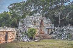 Labna 9696 ch (Emilio Segura López) Tags: arqueología arquitectura arquitecturamaya labna arco arcomaya piedra árbol rutapuuc maya culturamaya yucatán méxico