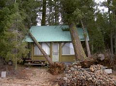 2003. Cabin impacted by falling trees. Lake of the Woods, Oregon. (USDA Forest Service) Tags: usda usfs forestservice stateandprivateforestry foresthealthprotection region6 r6 centraloregonservicecenter centraloregoninsectanddiseaseservicecenter centraloregonforestinsectanddiseaseservicecenter lakeofthewoods hazardtree dangertree blowdown kristenchadwick foresthealth pacificnorthwestregion decay forestdisease forestpathogen 2003 damage cabin falling tree rootwad