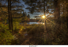 Sitting By The Sunset (Pearce Levrais Photography) Tags: canon hdr landscape lake pond water reflection sunset sunrise sundown forest tree plant bench path park nature reserve picoftheday photooftheday explore nh newhampshire sunburst sunray