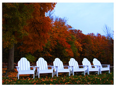 Lake Geneva Shore Path (michellewendling907) Tags: wisconsin lake geneva shore autumn fall leaves color chairs lakegeneva crisp adirondackchairs quiet peace rest