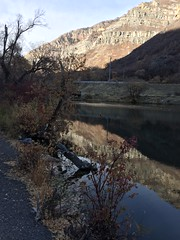 IMG_2843 (August Benjamin) Tags: provo provoriver provorivertrail fall utah mountains provocanyon fallcolors autumn trees leaves orem utahvalley jogging