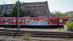 Graffiti (Honig&Teer) Tags: graffiti honigteer hannover db deutschebahn dbregio spraycanart streetart steel aerosolart eisenbahngraffiti railroadgraffiti train treno trein traingraffiti trainspotting trainwriting t trainart urbanart panel vandalismus sbahnhannover sbahn sbahngraffiti