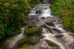The Falls at Watersmeet (daviddalesphoto) Tags: watersmeet exmoor devon england waterfall cascade river