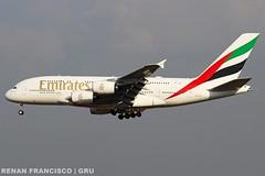 A6-EUT (renanfrancisco) Tags: emiratesairlines emirates ek uae a6eut a380800 a380 a388 airbusa380 airbusa380800 airport aeroporto aeropuerto airbus gru sbgr gruairport guarulhosairport landing pouso spotting airlines