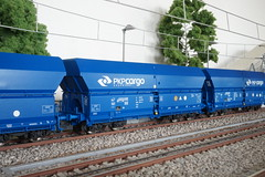 Roco 76133 Selbstentladewagen der PKP (Freestyler26M) Tags: pkpcargo pkp cargo 76133 roco modelleisenbahn spurh0 falns selbstentladewagen