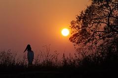 Pantanal Sunset with Jabiru Stork (Susan Roehl) Tags: brazil2012 thepantanal cuiabariver brazil southamerica jabirustork sunset alongthebanksoftheriver 66000squaremiles 10timesthesizeoffloridaseverglades 13000to23000yearscoveredbydesert thewordpantanalmeanswetland 3500plantspecies 656birdspecies 325speciesoffish 159mammalspecies 40to55inchesofraineachyear unescoheritagesite lessthan2underprotection threatenedbyexpandinghumansettlement unsustainablefarmingpractices illegalmining hydroelectricpowerplantconstruction unregulatedtourism 1milliontouristseachyear sueroehl photographictours naturalexposures pentaxk7 sigma150500mmlens handheld takenfromboat naturethroughthelens coth5 ngc