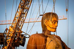 The Giant (MPH94) Tags: giant spectacular liverpool merseyside north west street theatre event events dream specatacular royal de luxe giants little boy xolo golden light lighting hour