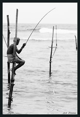 _52R4294-1 (Dream Delivered (Dreamer.Thanks for +6.000.000 vi) Tags: portrait blackandwhite fishing srilanka