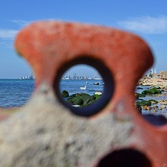 53039231 (aniaerm) Tags: sea coastalfinds sand