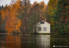 Autumn colors (Ari Kalliala) Tags: tampere kaukajärvi suomi finland syksy autumn olympus omdem1mk2 mzuiko40150pro