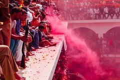 Pink Gulal Powder in Shri Dauji Temple, Chhabria India (AdamCohn) Tags: 017kmtobaldevinuttarpradeshindia abeer adamcohn baldev chhabria india shridaujitemple uttarpradesh colors geo:lat=27408308 geo:lon=77821850 geotagged gulal holi play wwwadamcohncom अबीर गुलाल baldeo