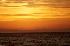 Vers l'infini - To infinity (p.franche Occupé - Buzzy) Tags: nature coucherdesoleil orange ciel nuages mer calme paix reposant sunset sky clouds sea calm peace relaxing oiseaux birds lapanne depanne lumière panasonic été sable plage vacances merdunord flandreoccidentale westhoek tourisme vagues sony sonyalpha65 dxo photolab belgium belgique belgïe europe pfranche pascalfranche