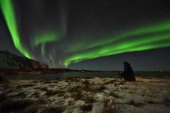 My first northern lights (Rudi Verspoor) Tags: aurora northernlights norway scandinavia arctic sky night lofoten travel peaceful cold february highlight goexplore stars green snow frozen