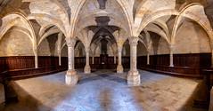 Monasterio de Fitero-Sala capitular (dnieper) Tags: monasteriodefitero salacapitular fitero navarra spain españa panorámica cisterciense
