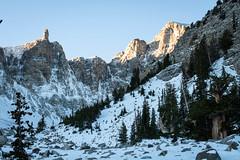 Bristle Cone Grove (Yildunstar) Tags: greatbasin nevada bristlecone pine mountains landscape backpacking