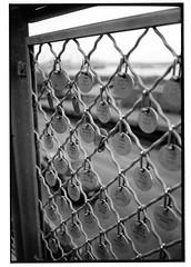 links (jollyville) Tags: blackandwhite 35mm leica leicam2 voigtlander colorskopar35mmf25 35mmf25 fp4 ilfordfp4 rodinal seattle