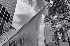 Oculus Wing (soboy5) Tags: oculus sooc nyc newyorkcity newyork manhattan lowermanhattan trainstation transitstation architecture building buildings trees exterior wings wing sky clouds bw blackandwhite monochrome mono skyscraper lines fuji fujifilm xt1