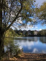 Back to the Heath (marc.barrot) Tags: reflection serene landscape park pond uk nw3 london hampsteadheath