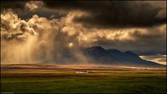 Squall - Leysingjastaðir (niggyl (well behind)) Tags: iceland northiceland norðausturland ísland inspiredbyiceland island icelandiclandscape breathtakinglandscapes landscape cloudsstormssunsetssunrises therebeastormabrewin northeasticeland sheppy seascapes skagafjörður fujifilm vatnsdalurvalley víðidalsfjallrange leysingjastaðir burialrites hannahkent agnesmagnúsdóttir storm squall stormclouds squallline wildweather rain rainsquall thefogandtherain fujifilmxpro2 fujixpro2 xpro2 fujinon fujinonxf552003546rlmois xf552003546rlmois xf552003546