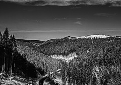 Train view harz (Nigel Valentine) Tags: harz landscape black white