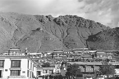 leica (kiwe00453) Tags: leica summicron 50mm f2 v4 kodak tri400 tibet