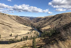 Fall Flora Loop (Doug Goodenough) Tags: bicycle bike cycle pedals spokes flora oregon bogans grand ronde river canyon climb troy loop gravel sun clouds sky view vista oct october 2018 18 jen scott grinding drg531 drg53118 drg53118p drg53118pflorafall