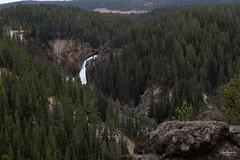 upper Falls (schulzk52) Tags: usa yellowstone yellowstonenationalpark wyoming vereinigtestaaten us