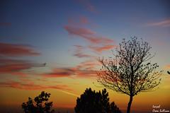 Alone sky (Ismael Owen Sullivan) Tags: foto fotografia nature naturaleza natural travel turismo traveler viajar galicia pontevedra españa spain europa europe nikon d5300 digital photography sky cielo clouds nubes colors colores sun sunset puestadesol blue red rojo naranja