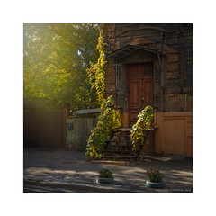 Old house (Alexandr Voievodin) Tags: oldhouse architecture trees foliage streetphotography cityscape olympusomdem10markii