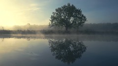 Calm Morning at the River (johaennesy) Tags: ruhrgebiet ruhrpott landscape video germany open source software blender ruhr morning sunrise
