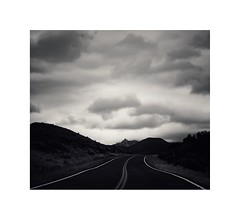 a fourth bird marks a new road (d i a n e p o w e r s) Tags: h love perfect tones lines road